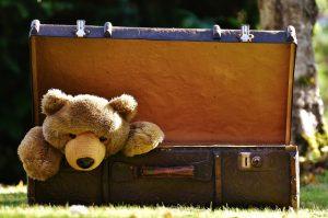 Teddy bear in a luggage