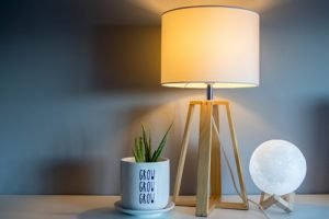 a lamp and a pot with a plant on a night table