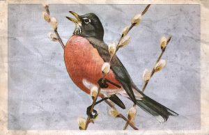 painting of bird