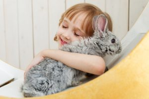 a girl with the rabbit