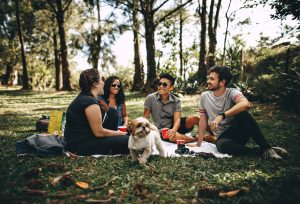 Group of friends on a picnic with a dog