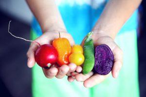 fresh food, perishables
