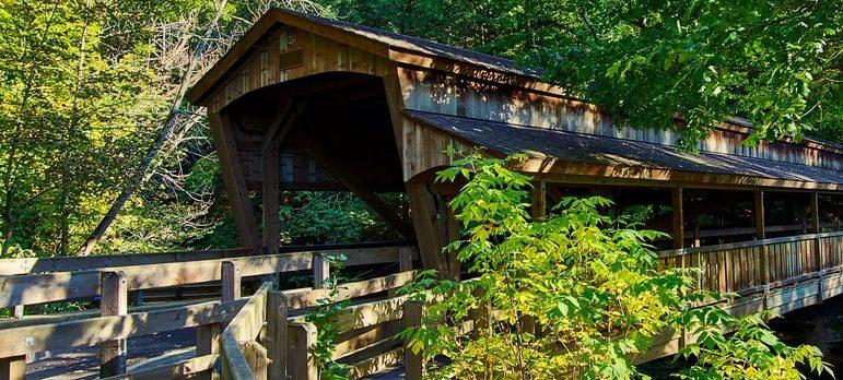 Wooden bridge in the nature