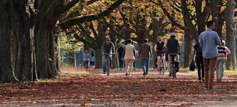 People in the park walking, riding bicycles